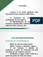 Cultura organizacional  paradigmas, conceitos, elementos e dinâmica - Parte I.pdf