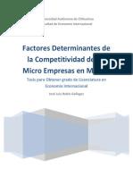 Competitividaden Microempresas Mexico
