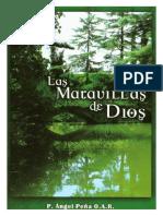 Ángel Peña - Las Maravillas de Dios