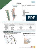 Biologi Inverterbrata ( Vermes ).pdf
