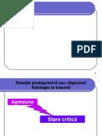 5. Socul.pdf