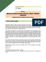 Sistem Organ Tubuh Ternak Unggas