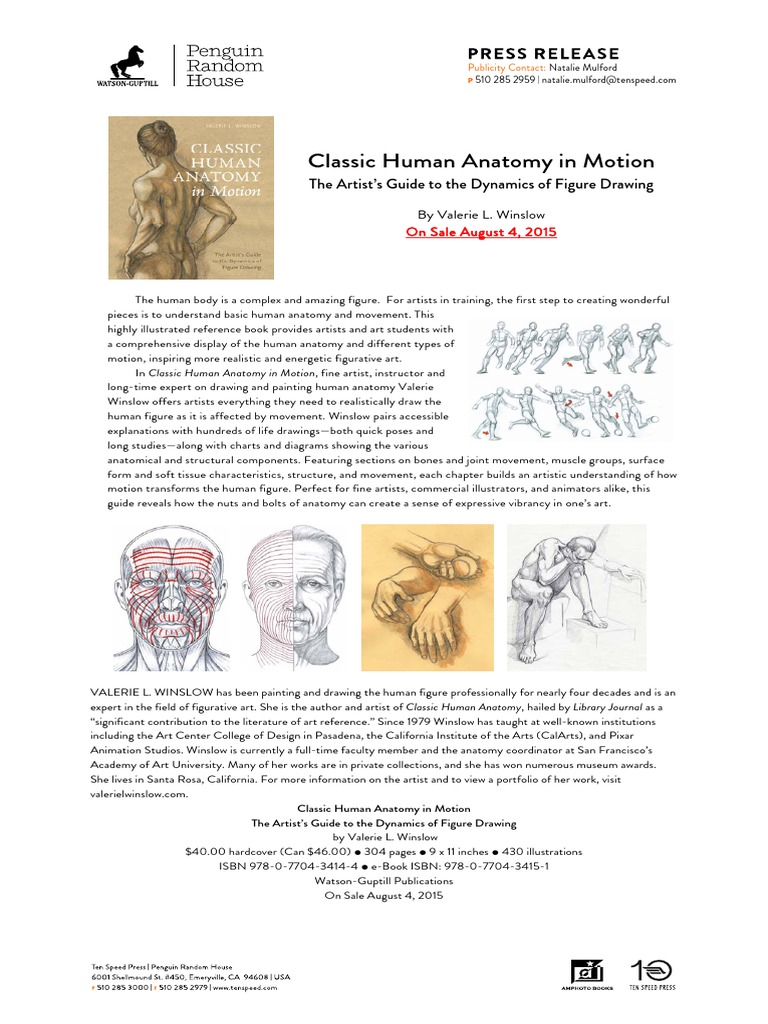 Classichumananatomyinmotionprpdf Figure Drawing Human Body