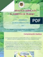 Contaminacion Quimica 1 Introduccion