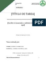 Formato Tarea Semanal Micro2
