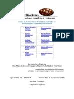Costos de Producción hortalizas.docx