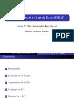 El Sistema Gestor de Base de Datos (DBMS)