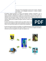 Manual de Operacion de Estacion Total.docx