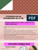EXPOSICIÓN Fitoterapia en Las Enfermedades de La Piel