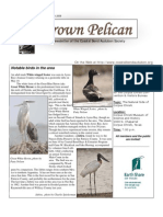 July-August 2009 Brown Pelican Newsletter Coastal Bend Audubon Society