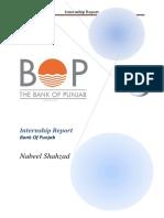 BOP Final Report