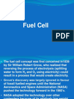 Lecture 7 Fuel Cell
