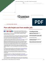 2008 Examiner article -San Francisco Wants Smaller Jails
