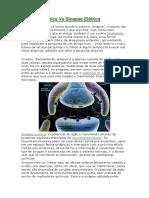 Sinapse Química Vs Sinapse Elétrica.docx