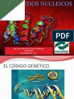 Acidos y Sistesis de Proteinas 17