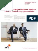 3era Encuesta Gobierno Corporativo 2015 Noviembre