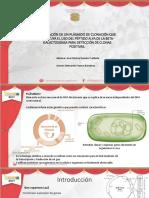 Presentacion_en_Congreso.pptx