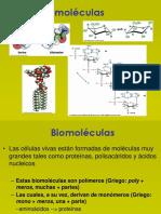 2. Biomoléculas.ppsx