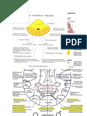 nodulos en las cuerdas vocales biodescodificacion