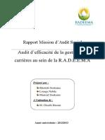 Rapport Mission D_audit RADEEMA