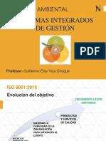 Resumen de Norma ISO 9001