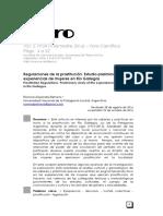 Regulaciones de la prostitución. Estudio preliminar de las experiencias de mujeres en Río Gallegos