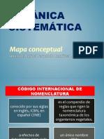 mapa conseptual de botanica (1) - copia.pptx