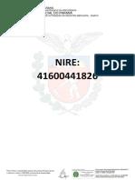 Pesquisa de Nire-176837868