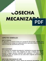 COSECHA MECANIZADA Caña Azúcar