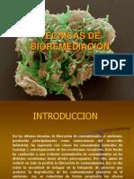 BIORREMEDIACION DIAPOS