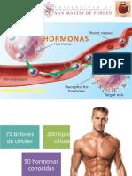 -Hormonas.pptx