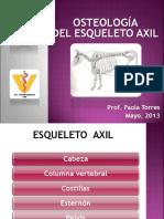 Osteologìa axil