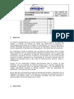 PVE. Riesgo Ergonomico (1).pdf