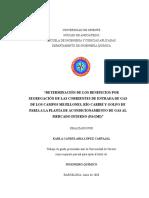 TESIS.Gasoductos PAGMI1