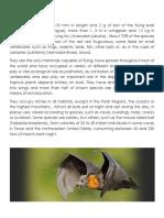 5 Characteristics of different Mammals