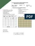 Form. Evaluacion Pav.rigido.plataforma