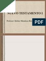Nuevo Testamento i