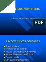 Actinomicetes_Filamentosos