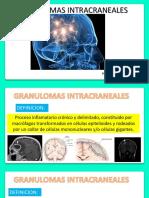 Granulomas Expo p..