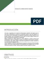 planta fcc.pdf