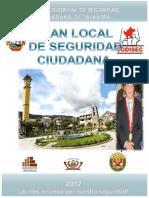 Plan Local de Seguridad Ciudadana 2017