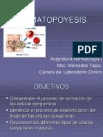 Hematopoyesis Oct Marzo2018