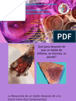 Reparacion Celular. Cicatrizacion Fisiopatologia Del Proceso de Cicatrizacion. Inmunidad y Autoinmunidad (1)