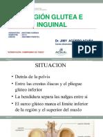 Region Glutea e Inguinal