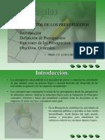 PRESUPUESTOS presentacion