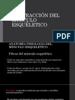 Contracción del músculo esquelético.pptx