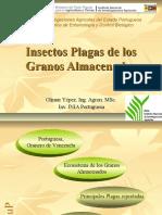 21964822 Insectos Plagas de Los Granos Almacenados (1)