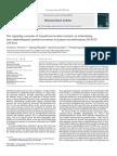 pinweha2008.pdf