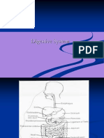 digestive system.ppt
