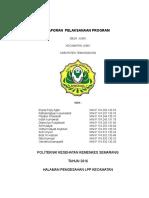 Laporan Pelaksanaan Program Kecamatan